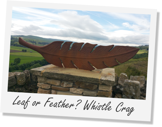 Leaf or Feather? Whistle Crag